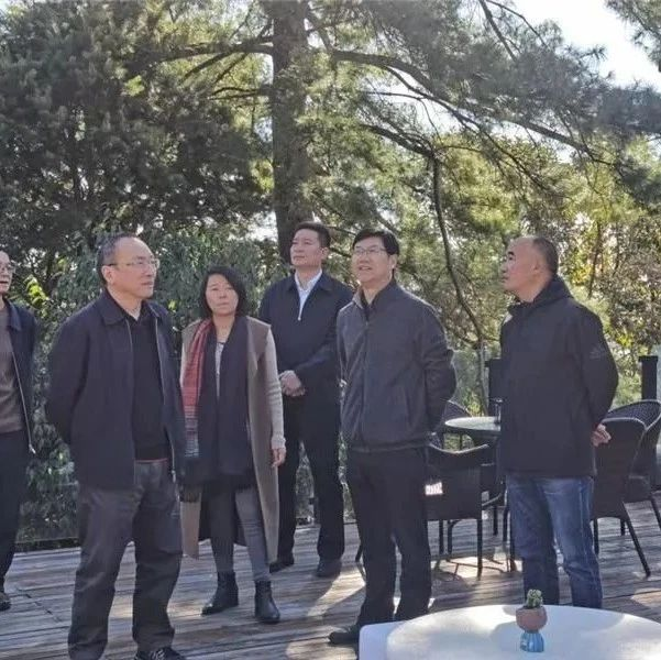 云南康旅集团到楚雄考察文化旅游项目