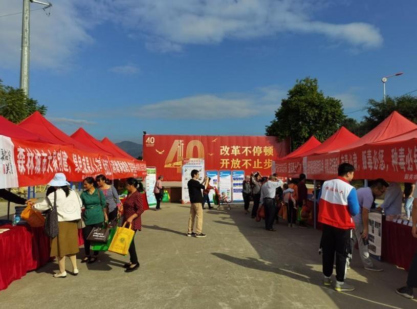 武江区开展自然资源宣传活动