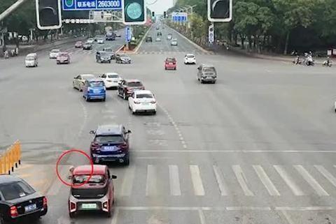 有人举报宠物狗在马路上开车,柳州交警调查后发现……