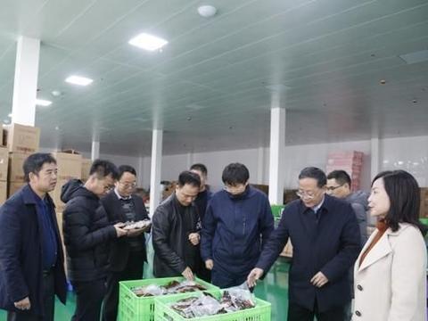 """安康市农产品深加工专家工作站为平利企业新产品开发""""出谋定策"""""""
