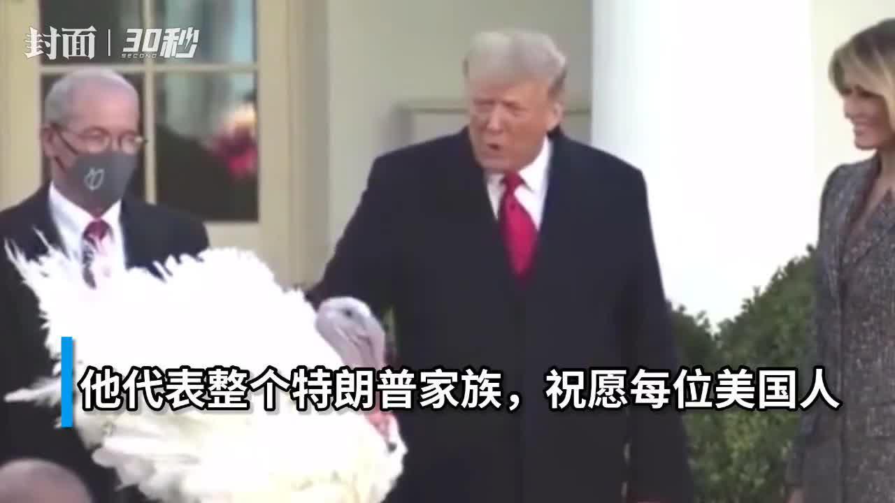30秒|特朗普赦免感恩节火鸡,代表家族祝美国人节日快乐