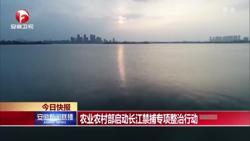 农业农村部启动长江禁捕专项整治行动