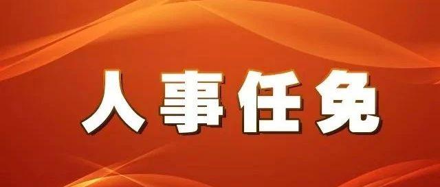 漳州发布最新人事任免信息