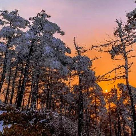 全年五折丨混搭凉都美景的暖冬之旅,99%的人都不知道还可以这样玩