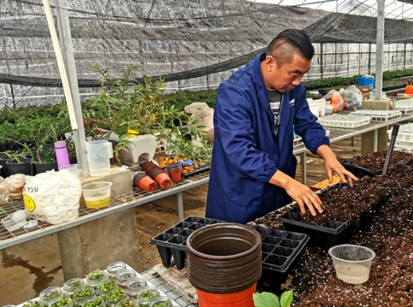 邮储银行:普惠贷款助力95后女大学生实现农业梦