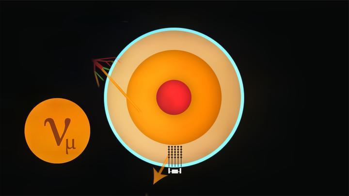 新型中微粒子或许是暗物质的候选者,可能改变宇宙时空!