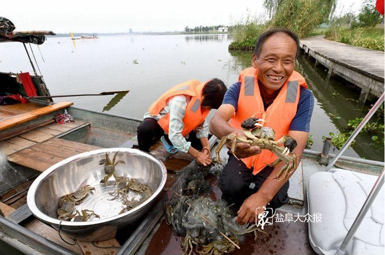 """【走向我们的小康生活】大纵湖出了一位""""蟹书记"""""""