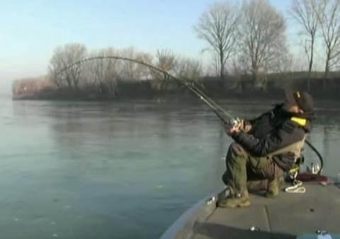男子河边钓鱼,突然感到船底有东西撞击,起身看清之后惊喜来了