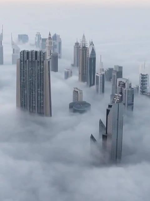 上海的天气,60层以下大到暴雨,60层以上晴转多云…………