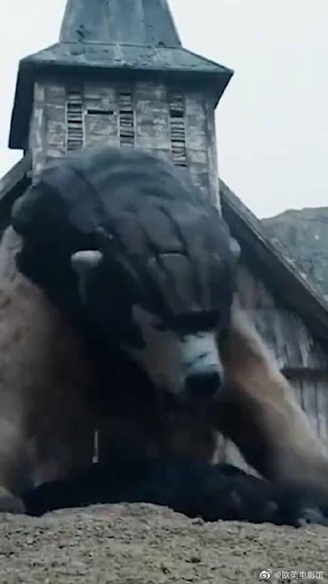 黑暗物质,酷酷的大熊来了,真是太帅了