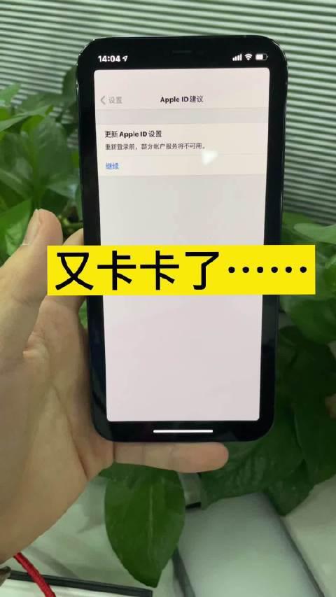 辣鸡iPhone 12 Pro Max,明明是你让我更新Apple ID设置的…………