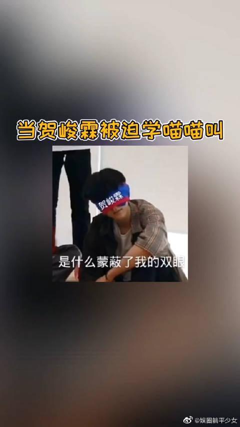 贺峻霖化身小猫咪喵喵叫 张真源、马嘉祺旁观看戏……