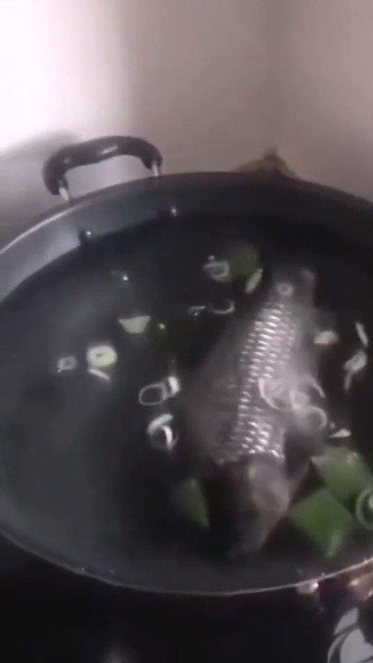 下班回家,媳妇说鱼在锅里,打开锅一瞬间小伙就崩溃了!