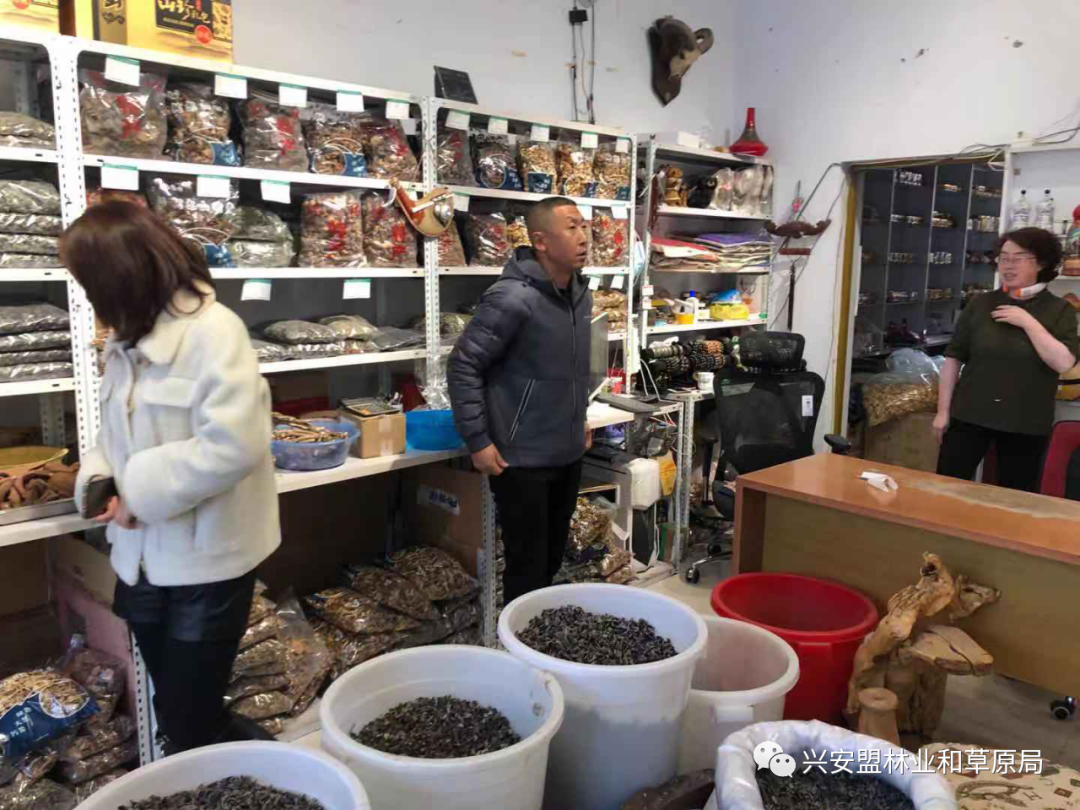阿尔山市林草局开展网剑行动 打击网上非法野生动植物交易