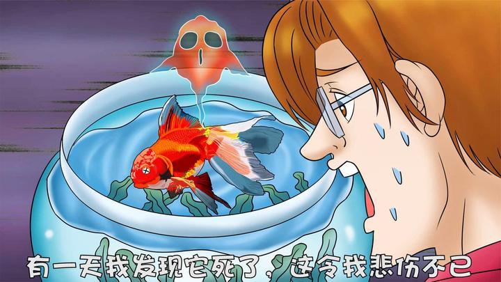 小伙养了多年的鱼死了,决定以最高礼仪和它告别,结局神反转!