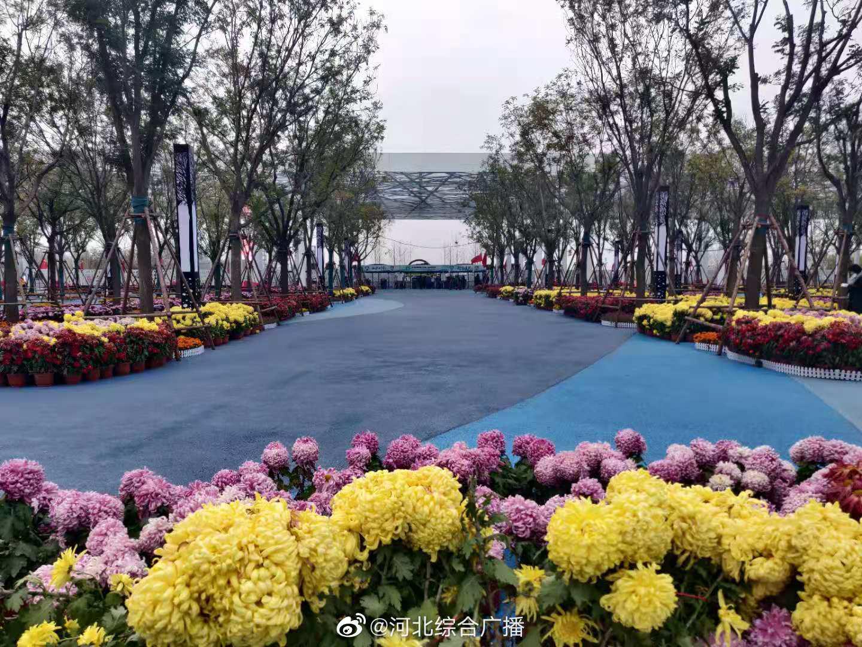 第四届(邯郸)园林博览会 新媒体助力生态复兴