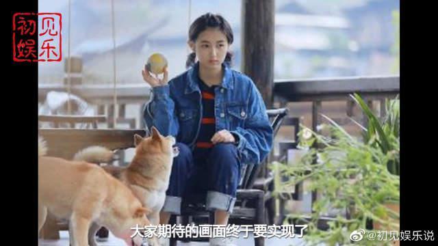 《向往4》导演上线官宣,张子枫确定加入?刘宪华再缺席已成定局