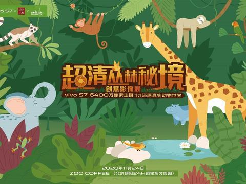 咖啡馆中的动物园?vivo S7丛林秘境影像展藏惊喜