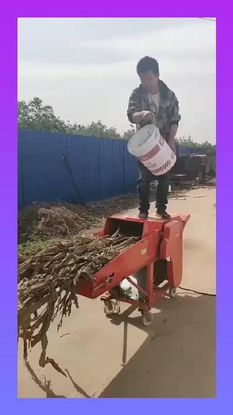 五吨铡草柔丝一体机,干湿两用,自动进料,适合各种养殖业