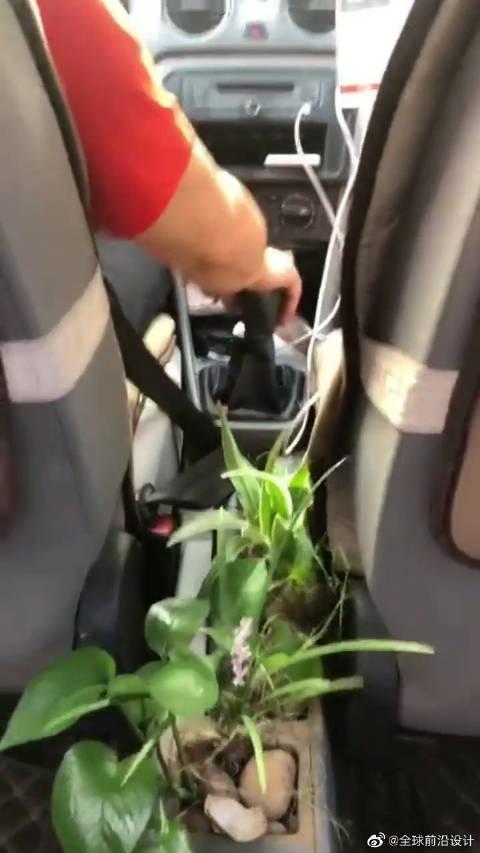 问下大家:你见过把花种在车里的吗?