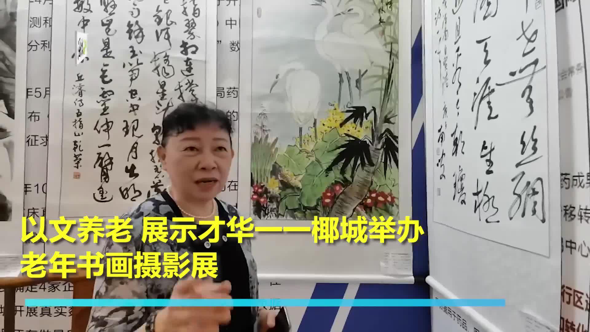 【海视频】以文养老 展示才华一一椰城举办老年书画摄影展