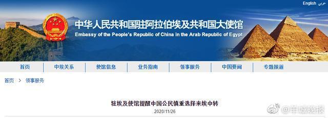 60余位中国公民在埃及出差或中转新冠检测阳性……