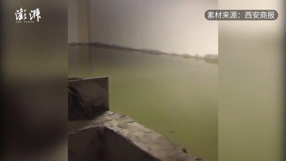 山西小区物业瞒着业主负2层养鱼 ,物业:暂时养的喷泉里的鱼…………