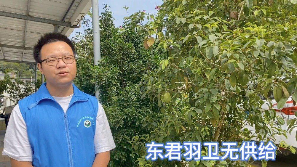 """江门市新会区罗坑镇禁毒志愿者带你了解""""恶之花""""-罂粟"""