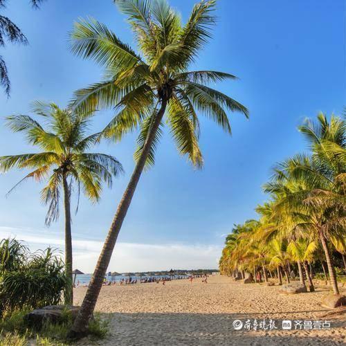山东印发省级旅游度假区管理办法,资源环境破坏严重将取消等级