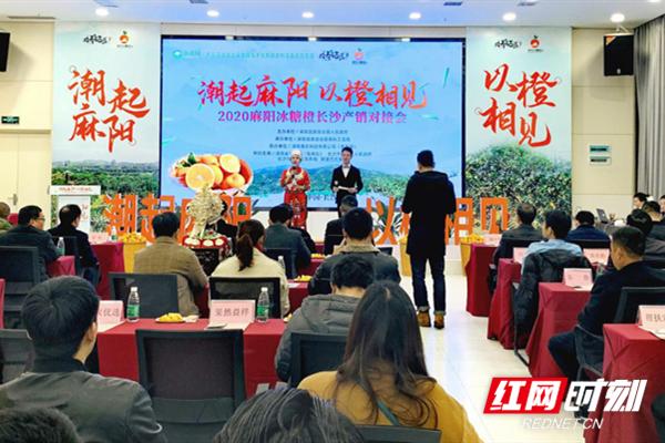 电商抱团助销 2020年麻阳冰糖橙长沙产销对接会在惠农网总部举行