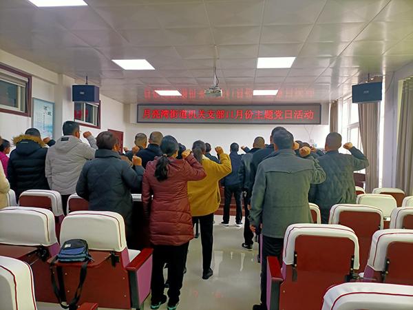 新蔡县月亮湾街道开展11月份主题党日活动
