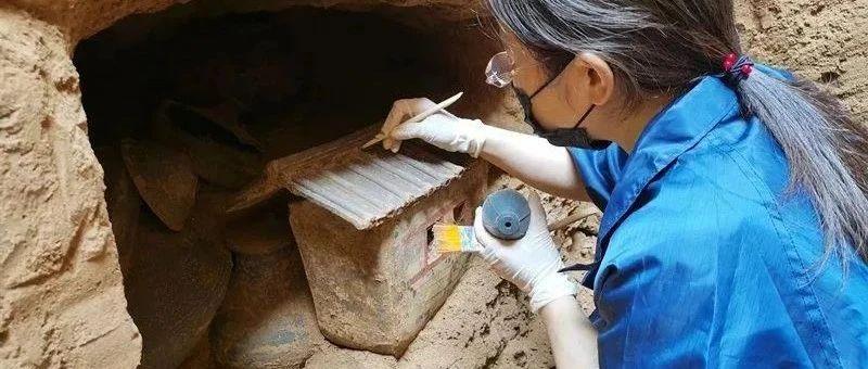 关注!陕西一西汉早期大型墓地考古获重大发现