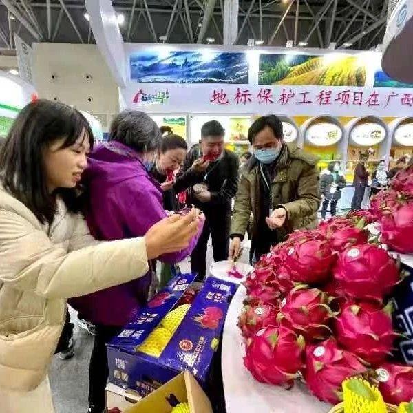 农产品地理标志南宁火龙果绽放农交会备受热捧