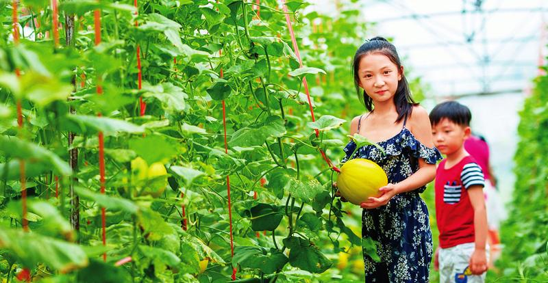 良庆区2020年民俗文化旅游节即将启幕