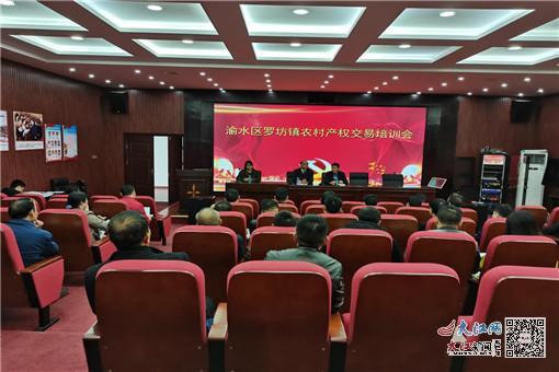 渝水区罗坊镇召开农村产权交易培训会(图)