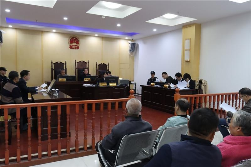 嘉禾法院邀请代表委员观摩机动车交通事故责任纠纷案庭审
