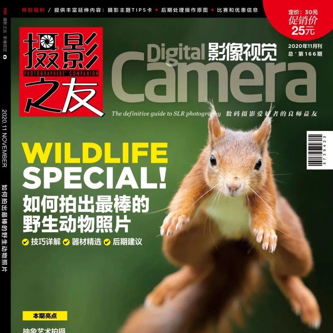 11月刊   野生动物拍摄守则