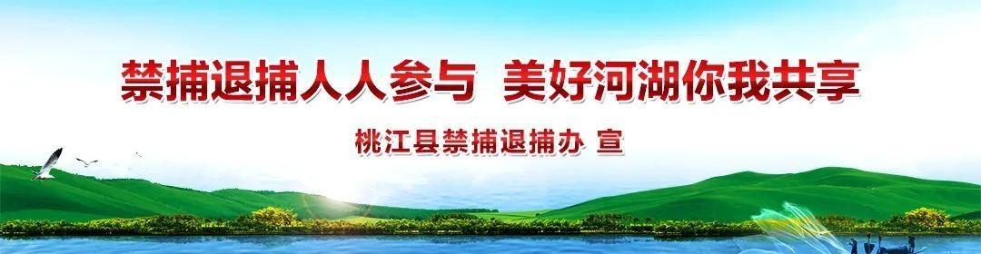 快看!桃江县人民法院公布12名失信被执行人名单,有没有你认识的?