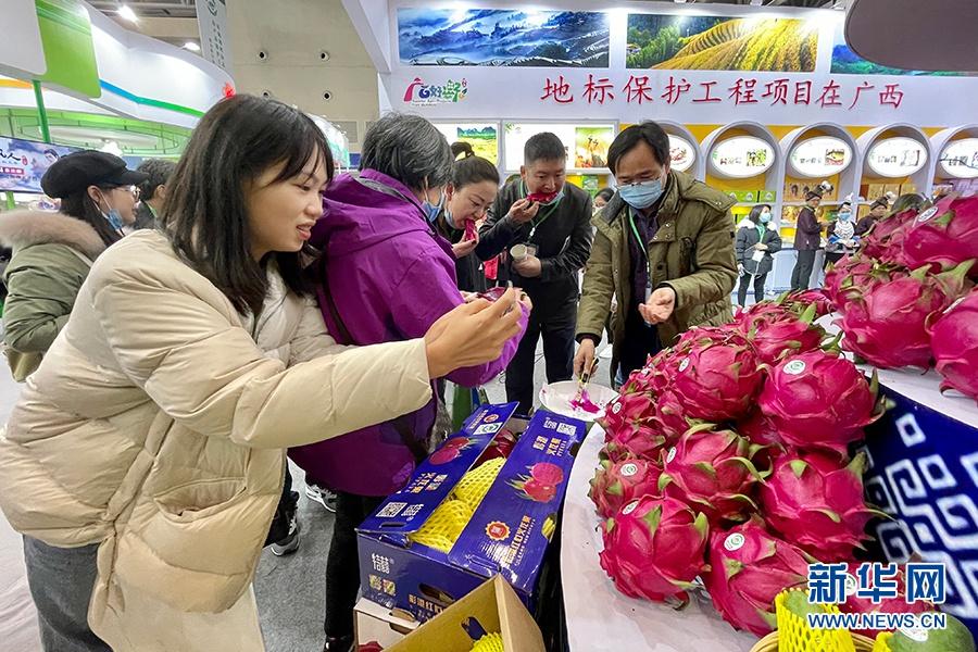 农产品地理标志南宁火龙果借农交会打响知名度