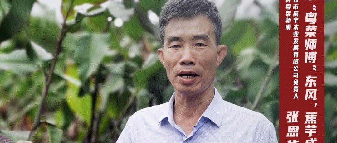 """乘""""粤菜师傅""""东风,蕉芋成了""""金粉条""""!"""