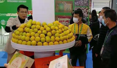 湛江明星产品参展第十八届中国国际农产品交易会