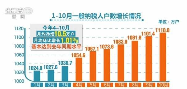 国家税务总局:今年前十月 一般纳税人月均净增8.8万户