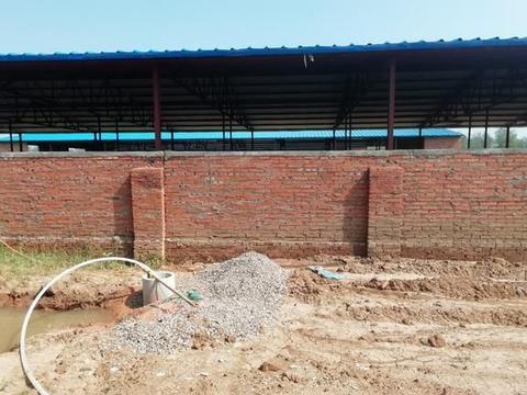 农民搬离村庄,自己把房子拆掉开垦宅基地种植,超出的面积怎样算