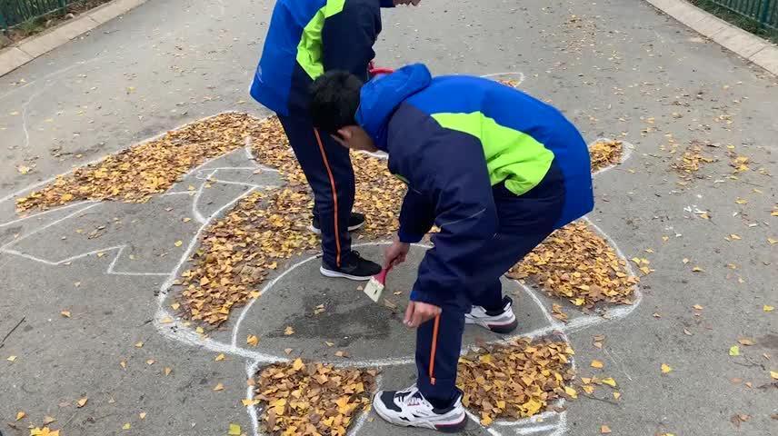厉害了!落叶作画凹造型,青岛中山公园樱花大道变身艺术大道
