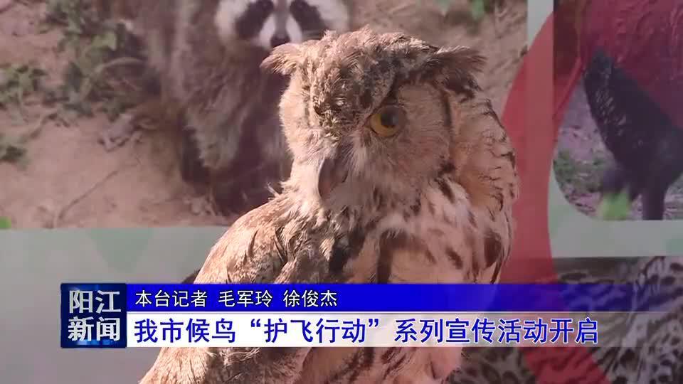 """阳江市候鸟""""护飞行动""""系列宣传活动开启"""