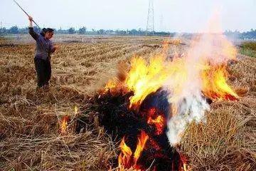 出行提示 | 焚烧秸秆影响交通安全 吉林交警提示您行车多加注意!