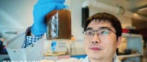 """华裔科学家荣获澳大利亚""""科学界奥斯卡""""奖项!专注污水""""变废为宝""""!"""