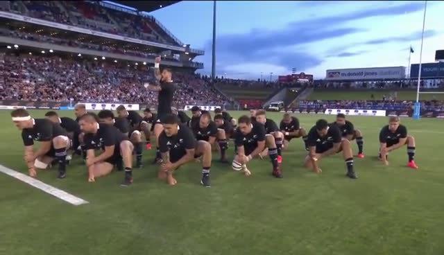 11月28日,阿根廷普马斯队VS新西兰全黑队的橄榄球赛前…………