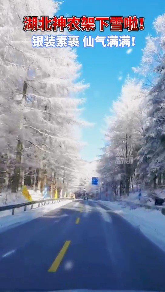 雪后的神农架银装素裹,初晴如似仙境!