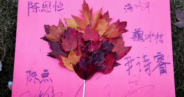 """用枫叶作画,文华学院创意展板让红枫""""活起来"""""""